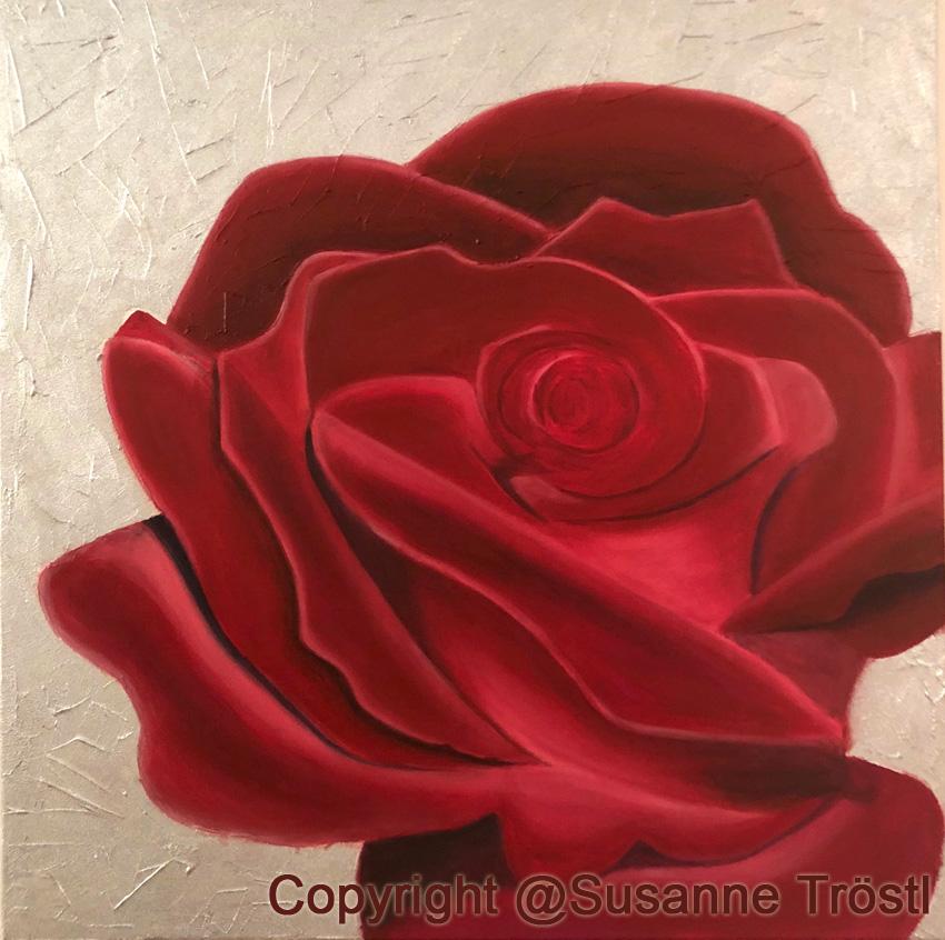 rose-rot-silber-2-90x90